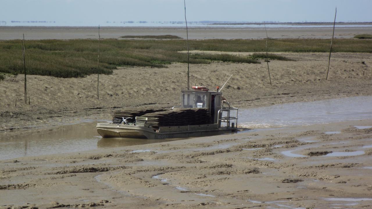 ostréiculteur rentrant au port Baie de Bourgneuf-en-Retz