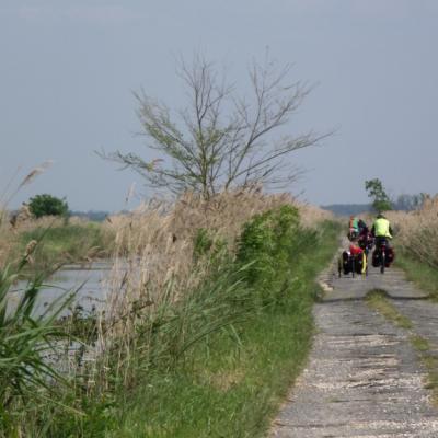 au bord du canal de Broue