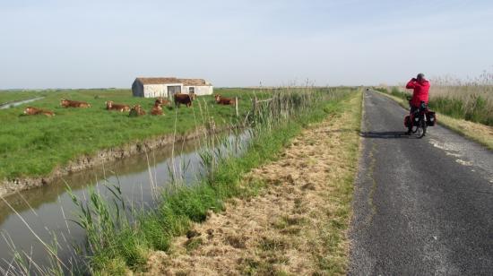 canal de Broue