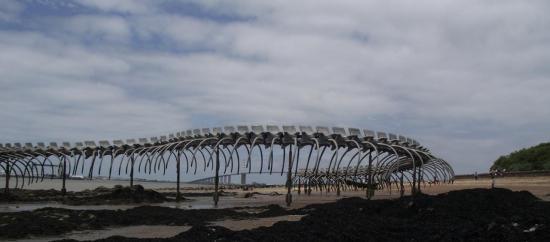 le-serpent-et-le-pont.jpg