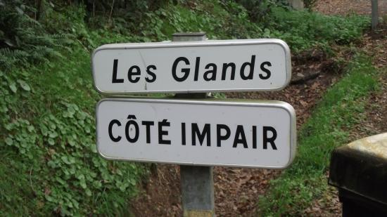 Les glands impair 2