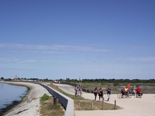 Noirmout17
