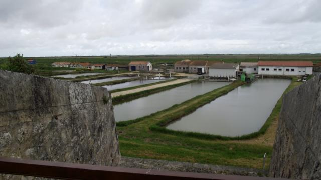 Rochefort 061
